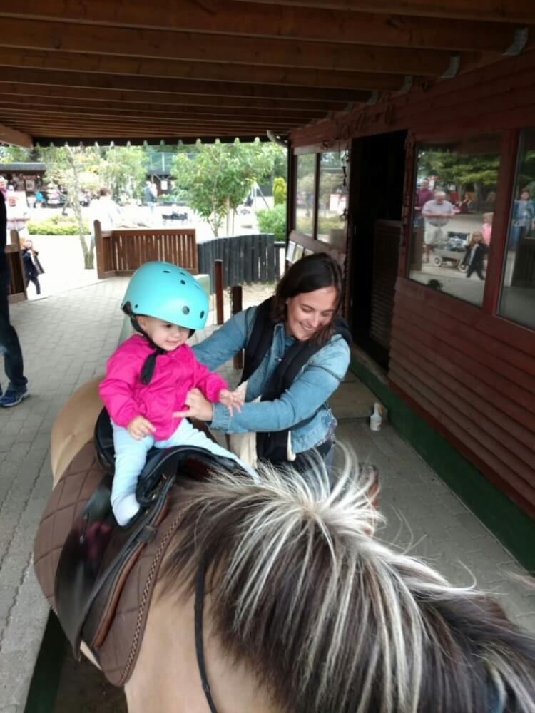 pony-jylland-zoo-768×1024